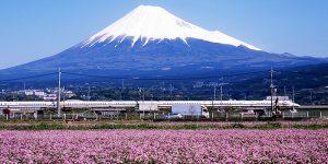 kizuna_japan_image05